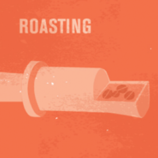 Module 4: SCA Roasting Skills Foundation